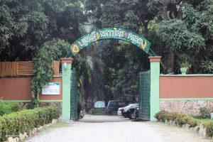 Fun places in lufasi nature park